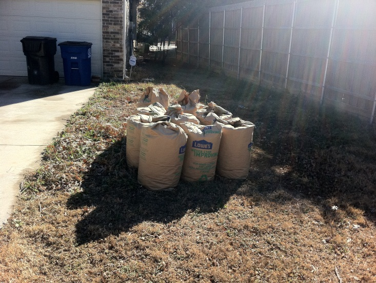 Improper Yard Waste Set Out