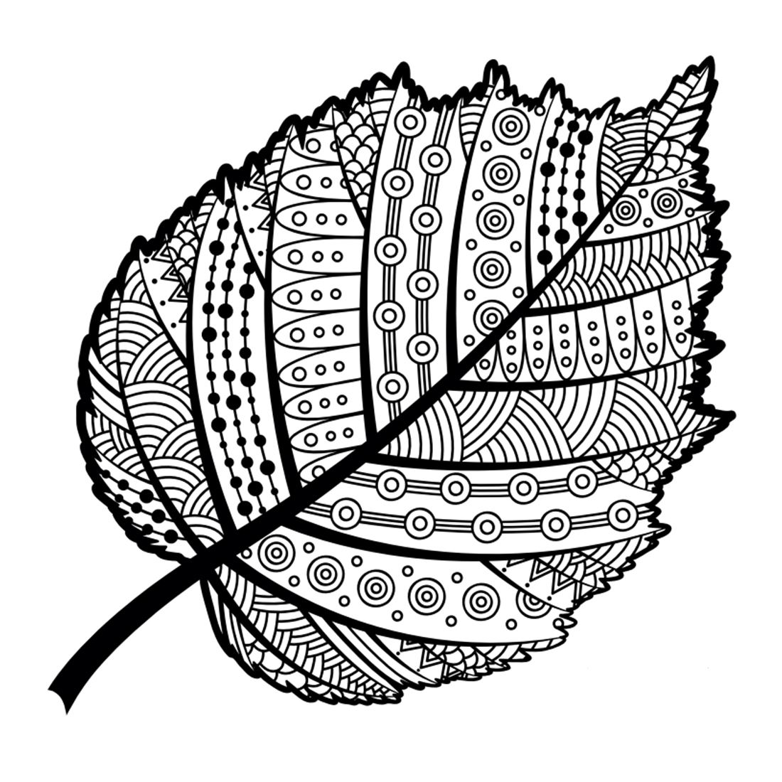 Coloring book drawing of a leaf