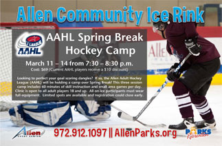 AAHL Spring Break Hockey Camp at ACIR
