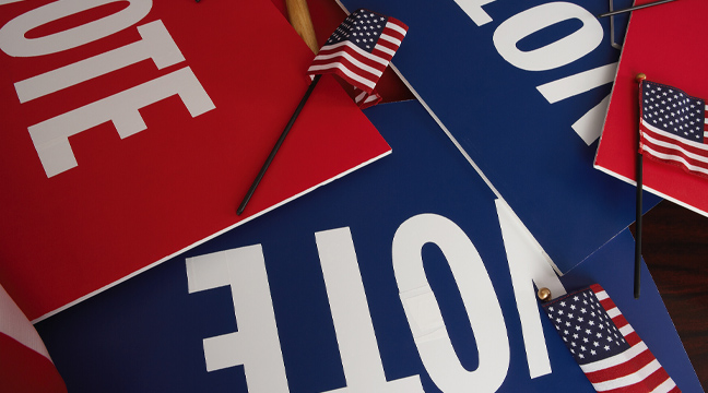 red and blue voting signs